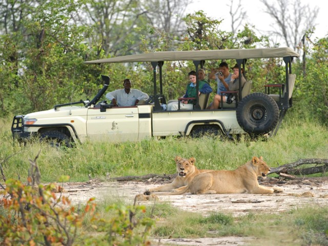Game drive in Moremi