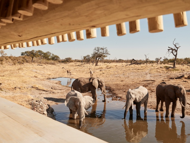 The hide at Savute Elephant Camp in Chobe National Park, Botswana