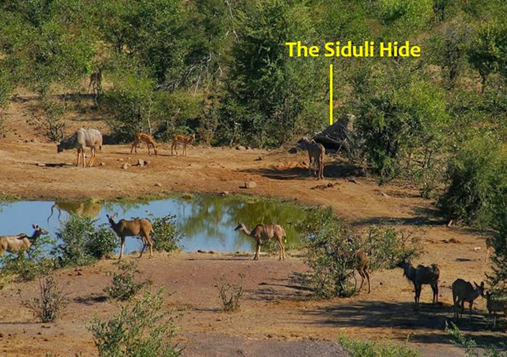 The location of the Siduli Hide at Victoria Falls Safari Lodge