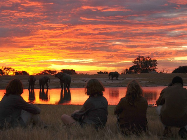 Sunset by the waterhole