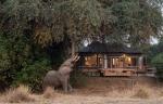 Chikwenya Camp - Mana Pools National Park