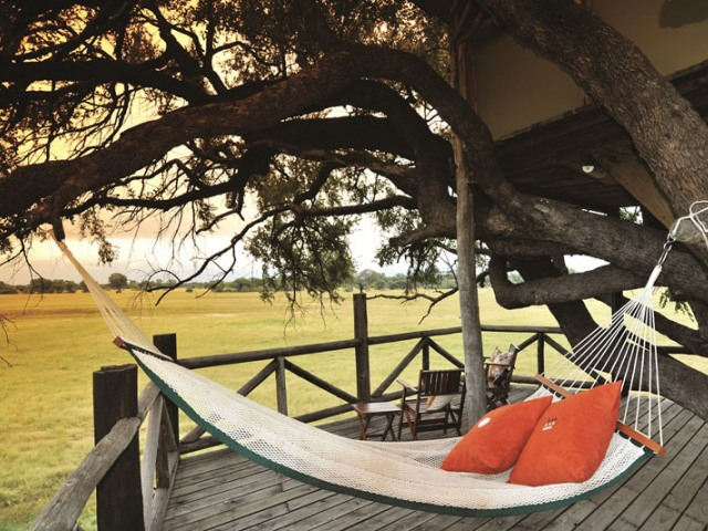 Dove's Nest treehouse with panoramic views of Hwange bush -The Hide, Hwange National Park, Zimbabwe