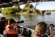 Professional guided photgraphic river safaris in Victoria Falls