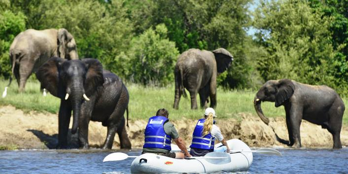 Canoe safaris on the Zambezi
