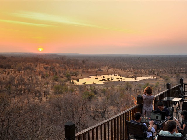 Guests enjoy animals at the waterhole