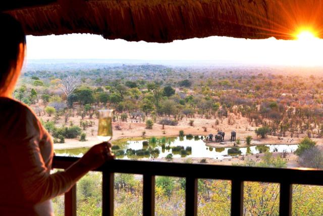 View from a waterhole-facing suite at Victoria Falls Safari Lodge - Victoria Falls, Zimbabwe