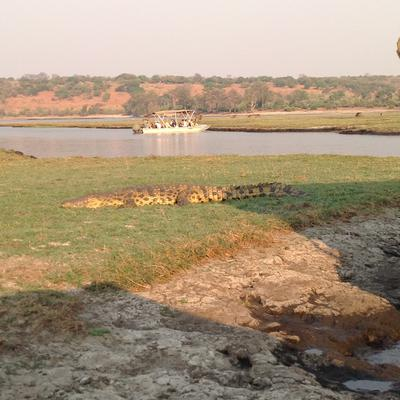 In Chobe National Park