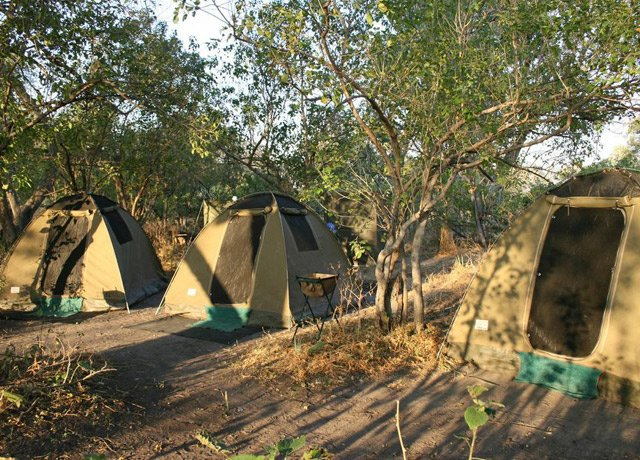 Dome tents in the Okavango