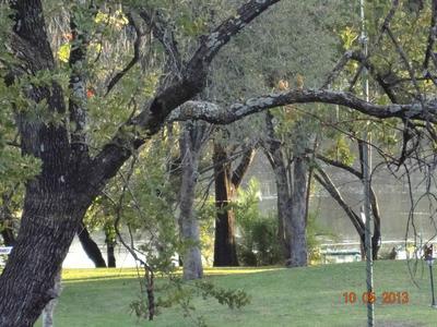 Lawns onto the banks of the Zambezi River