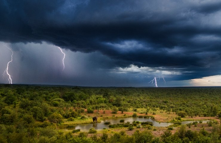 Thunderstorm approaching the waterhole in Victoria Falls, Zimbabwe