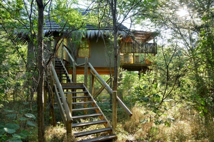 Treetop rooms at Bakwena