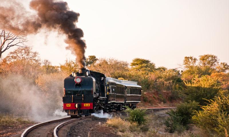 Bushtracks Express Steam Train
