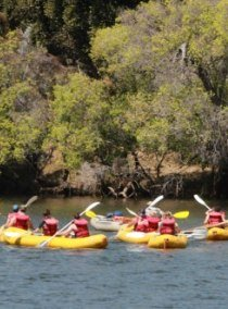 Canoeing on the upper Zambezi River, packaged with a sunset cruise