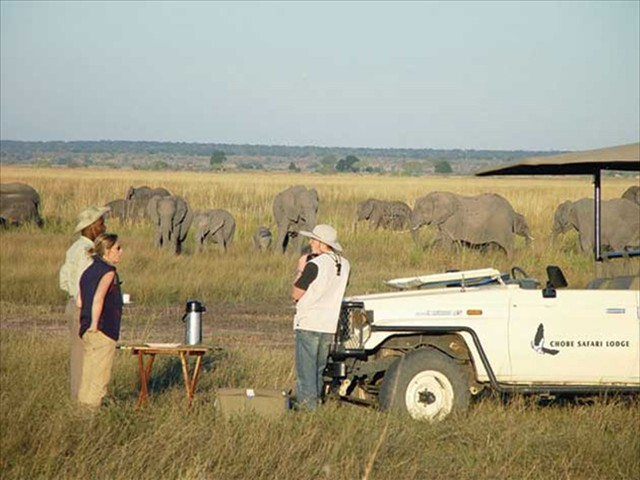 Tea and coffee during a morning game drive in Chobe National Park, Botswana