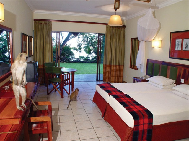 Guests sometimes come into the rooms at Chobe Safari Lodge - Botswana