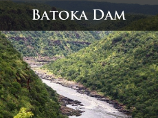 What will damming the Batoka Gorge 54kms from the Victoria Falls do to the environment? Have your say.