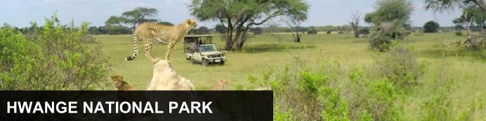 Destination Hwange National Park, Zimbabwe