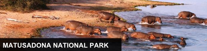 Destination Matusadona National Park, Zimbabwe