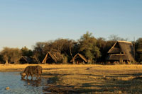 The waterhole in front of The Hide - Hwange National Park accommodation