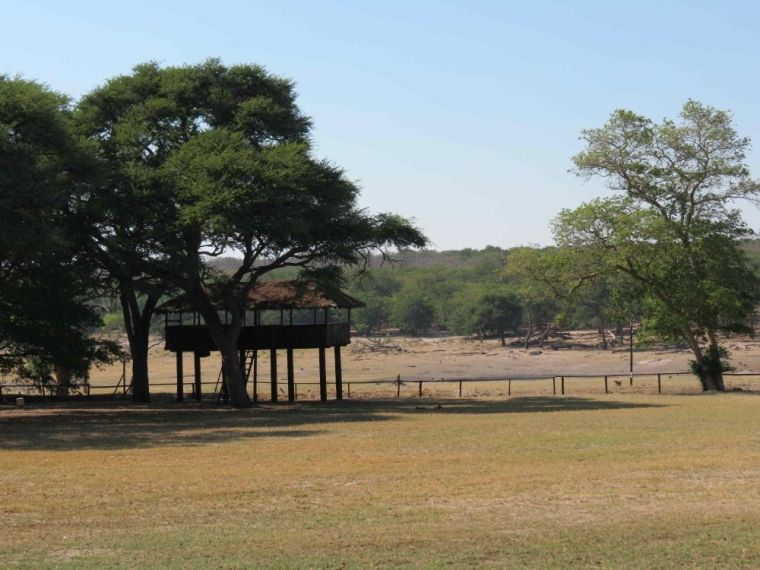 The elevated platform faces a waterhole