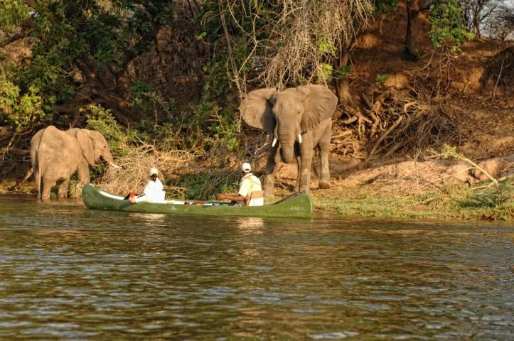 Canoeing on the Zambezi River