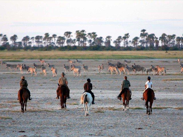 Horse safari in Makgadikgadi