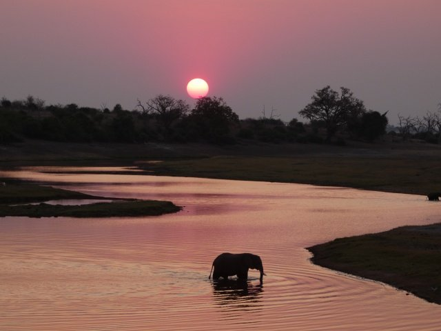 African sunset in Chobe National Park, Botswana