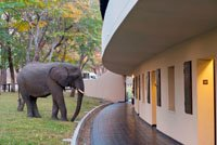 Hwange Safari Lodge - Zimbabwe