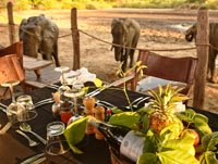 Kanga Cmap Dining in Mana Pools National Park, Zimbabwe