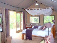 Tented safari suite at Miombo Camp in Hwange National Park, Zimbabwe
