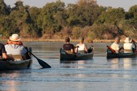 Canoe Safari on the Zambezi River in the Mana Pools section of the river.