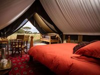 Osunyai Camp - Tarangire National Park, Zimbabwe