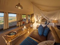 Standard Luxury at Ruckomechi Camp, Mana Pools, Zimbabwe