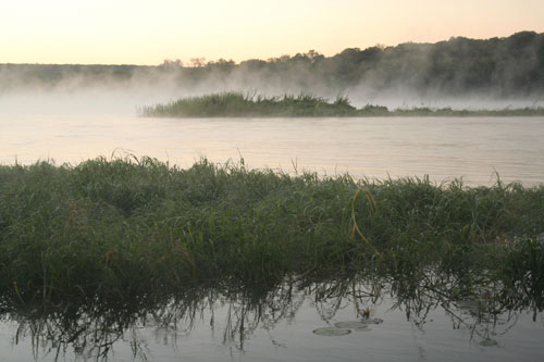 Early morning mists on the Zambezi