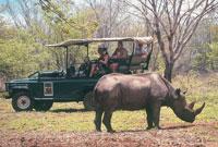 Rhino Encounter Victoria falls