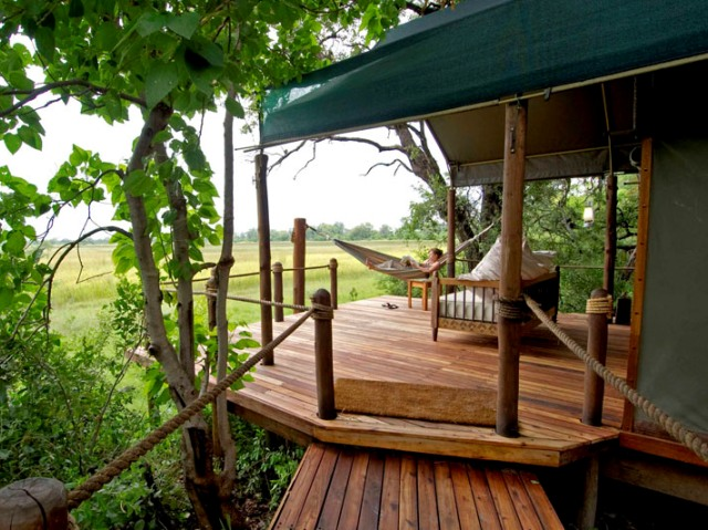 Comfortable safari camp in Moremi