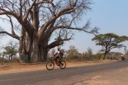 Bike tour in Victoria Falls