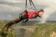 Flying fox  in Victoria Falls