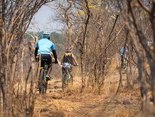 Bike tour in Victoria Falls, cycling through the bush