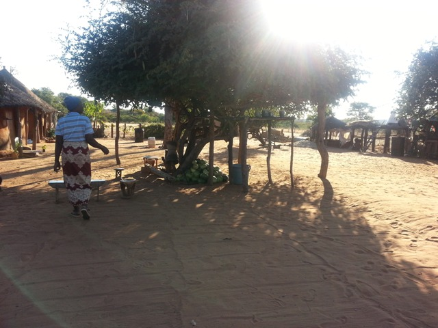 Victoria Falls Cultural Village Tour - under the shade where the socialising happens