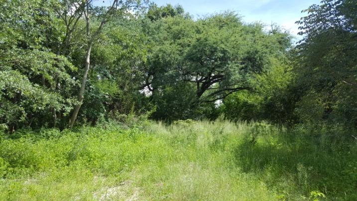 Zambezi River property