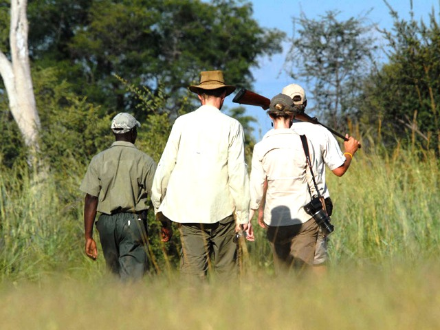 Bush walk in the Zambezi National Park near Victoria Falls in Zimbabwe